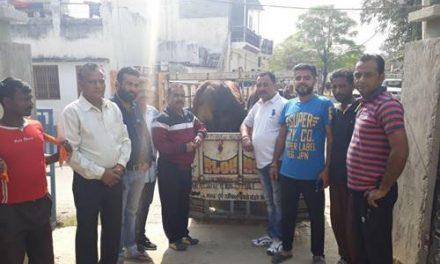 सडक़ों पर नहीं घरों और गौशालाओं में गायों को रखने से सफल होगा गौसेवा का मनोरथ: अश्विनी गैंद