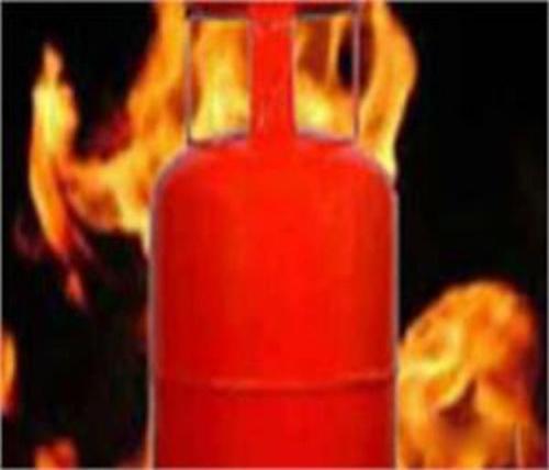 गैस सिलैंडर को आग लगने से महिला सहित 2 झुलसे