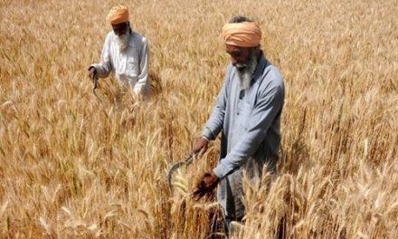 समय से पहले गर्मी ने दी दस्तक, किसानों के छूटे पसीने