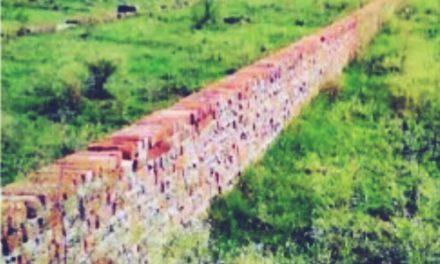 Land Scam – 250 करोड़ रुपये के घोटाले में ED ने  की बड़ी कार्रवाई , 10 की प्रॉपर्टीफ्रीज
