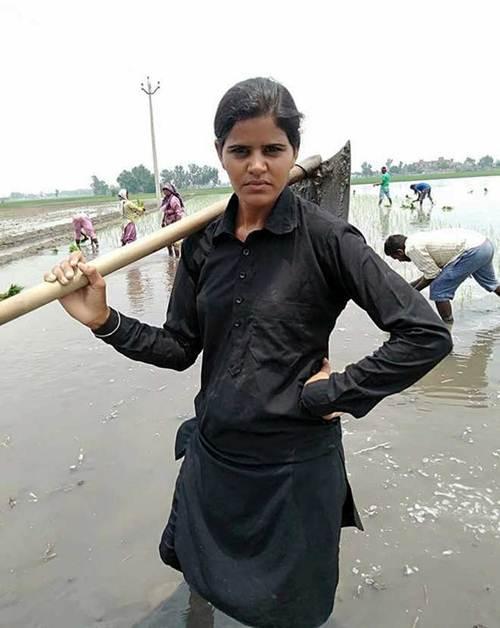 हरजिंदर कौर अपने परिवार का पालन पोषण करने के लिए खेतीबाड़ी का काम करती है