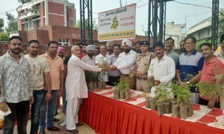युवा कांग्रेस द्वारा घर घर हरियाली अभियान के तहत बांटे 1000 पौधे।