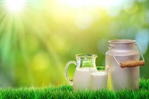 Drink 'grassmilk' to boost heart health- Dr. Sukhmeet Bedi