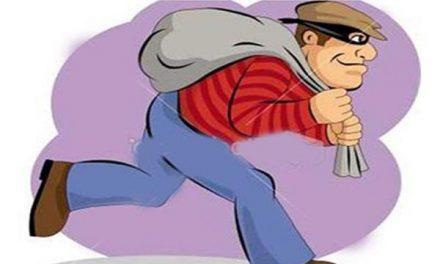 दिन-दिहाड़े 1.50 लाख नकद व 7 लाख की एफ.डी. चोरी