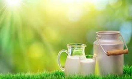 Drink 'grassmilk' to boost heart health- Dr. Sukhmeet Bedi
