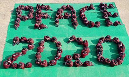 सेंट सोल्जर स्कूल के छात्रों ने दिया 'पीसफुल ईयर 2020 ' का संदेश