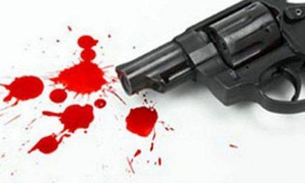 दिल्ली के सिविल लाइन इलाके में 2 सगे भाइयों ने एक-दूसरे को मारी गोली, मौत
